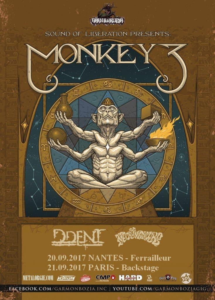 monkey_tour_france